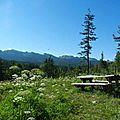 Randonnée accompagnée - balcons est du vercors (réserve des hauts plateaux) - pas de serre brion - pas etoupe