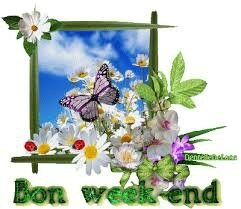 bon week-end papillon