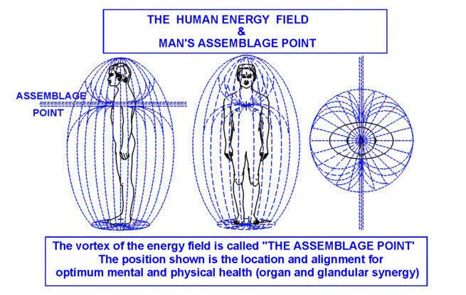 ➡️Un être humain est un champ d'énergie oscillant indépendant