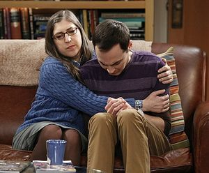 The big bang theory S06E14