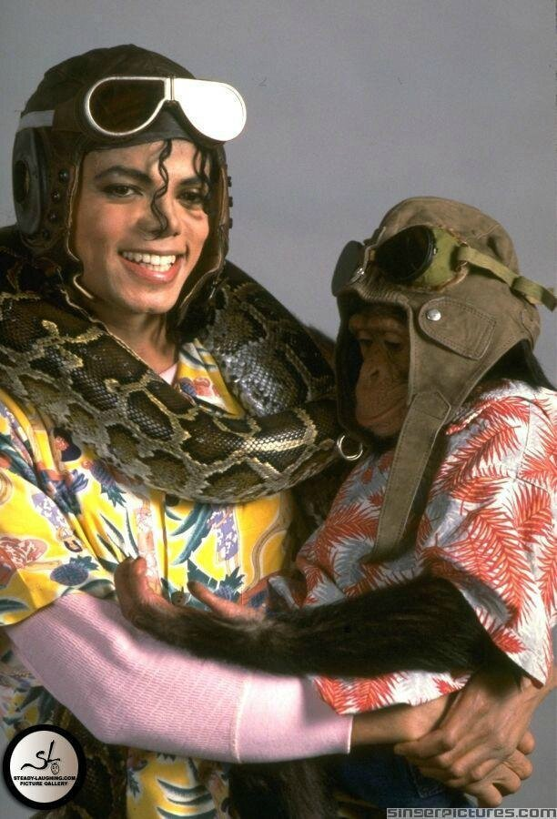 MJ-and-some-of-his-pets-mj-fans-18806509-612-900