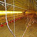 0449 - 29-9-2012 - Randonneurs du Pays du Lin à la hutte