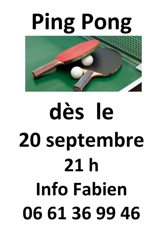 Nouvelle section ping pong-1