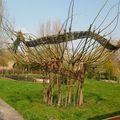 Osier jardin 3