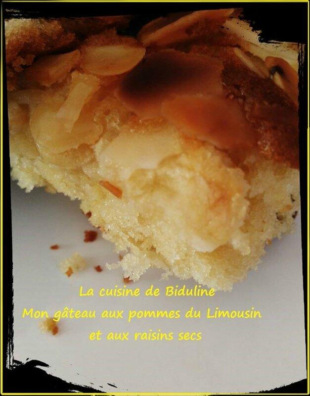 Mon gâteau aux pommes du Limousin et aux raisins secs - La cuisine de Biduline