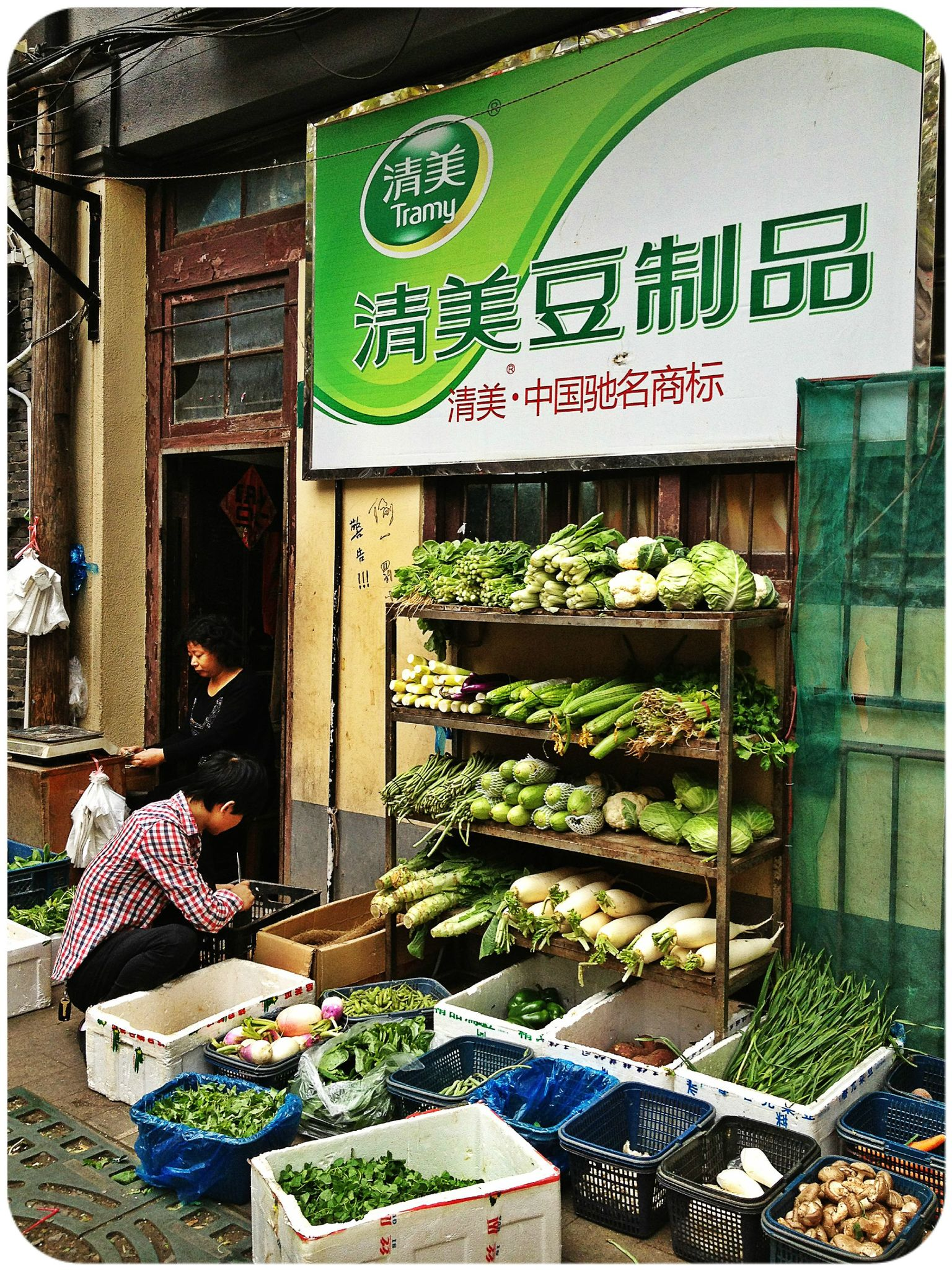 Shanghai-Legumes