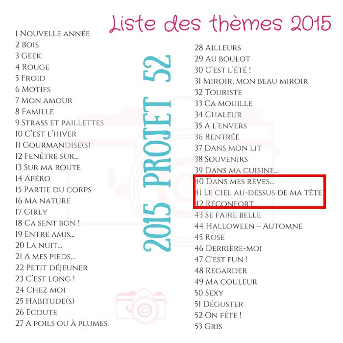 projet52-2015-thèmes-5