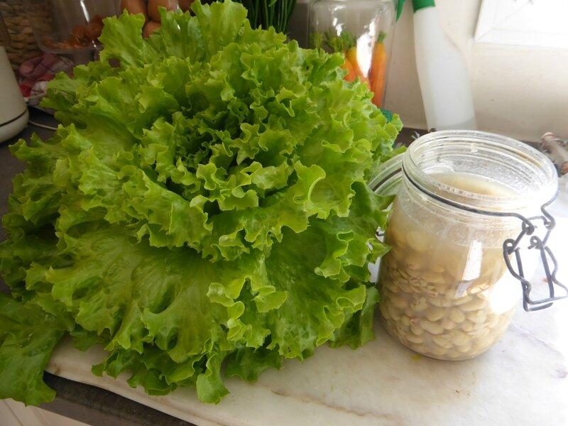 19-salade (1)