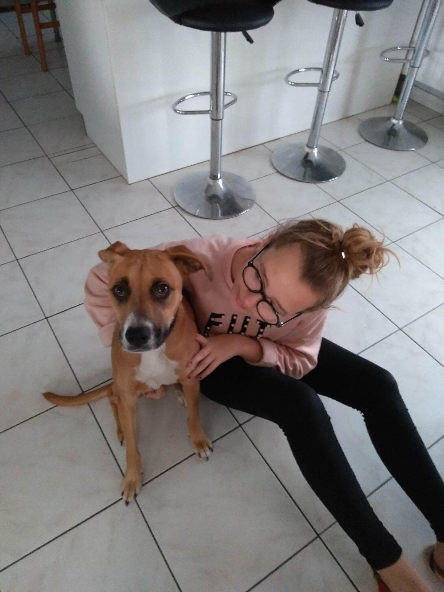 CATHERINE dog sitter à Orchies garde votre chien en famille