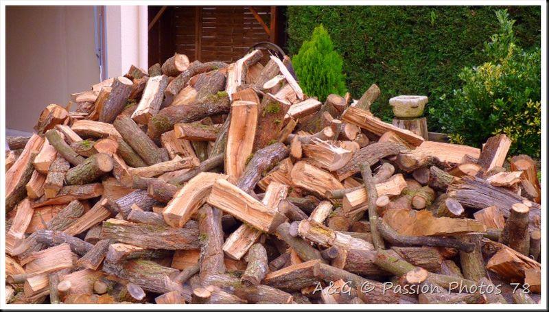 Quand il fait froid ... coupe du bois !