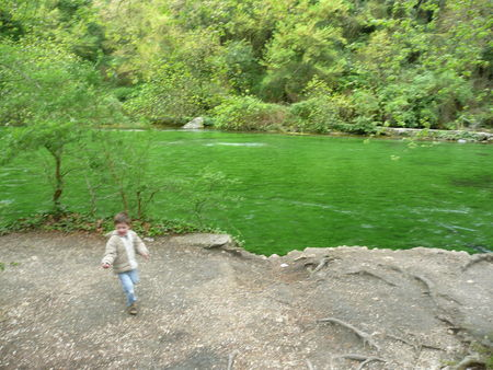 Fontaine_Vaucluse_18_avril_2008__15_