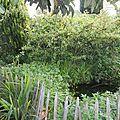 Les 2 bassins