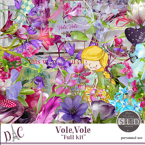 StudioLalieDesigns_Vole_Vole folder (1)