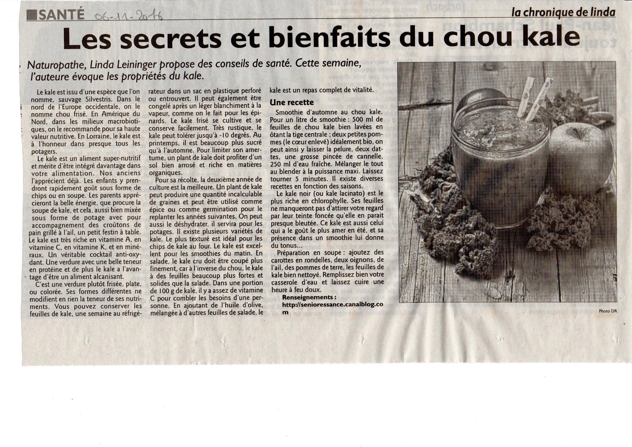 Les secrets et bienfaits du chou kale