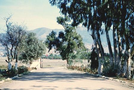12_RCA_EWIG_29__Sortie_de_la_ferme_Oudali__1963
