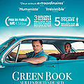 Green book : sur les routes du sud --> critique