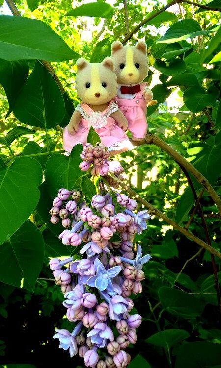 Papy et Mamie Bouba dans le lilas