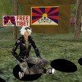 10 mn pour le tibet sur second life (tm)