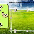 Discrimination visuelle : le jeu des vaches