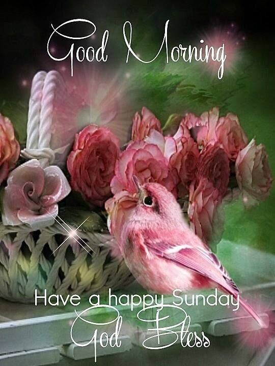 319789-Good-Morning-Have-A-Happy-Sunday-God-Bless