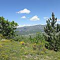 La montagne de linceuil