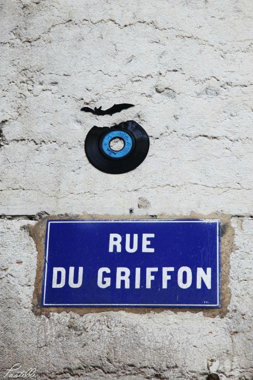 Griffon_13 16 04_1444