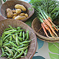 Une jardinière de légumes !!!