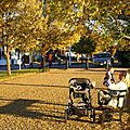 IMG_3084a