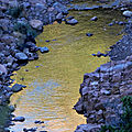 Gold river (3)