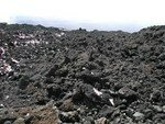 vegetaux__28__l_etna___absence_de