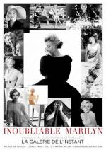 expo_inoubliable_marilyn