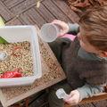 La boîte à graines !