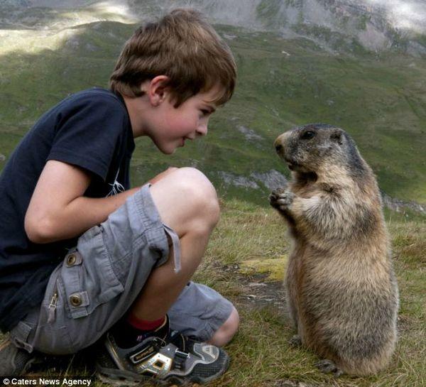 marmotte et gamin2