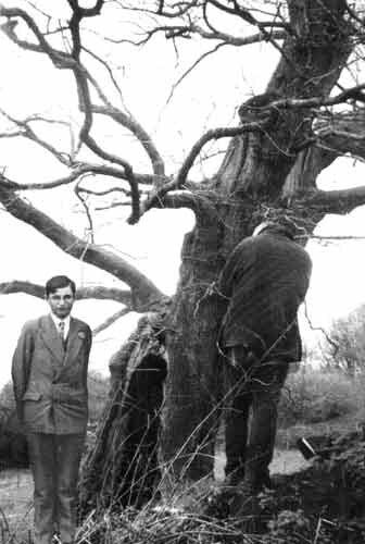 armand_robin_arbre_de_lecture[1]