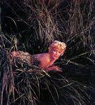 1955_09_long_island_mount_sinai_leopard_020_1