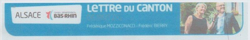 mozzico7