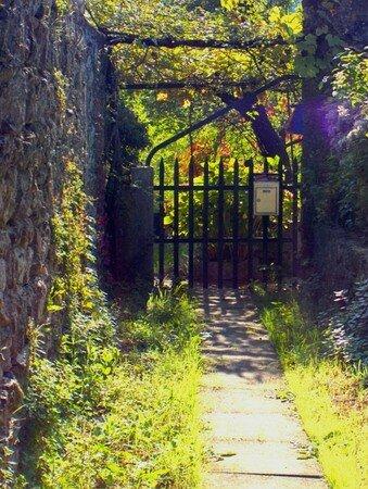 portillon_jardin