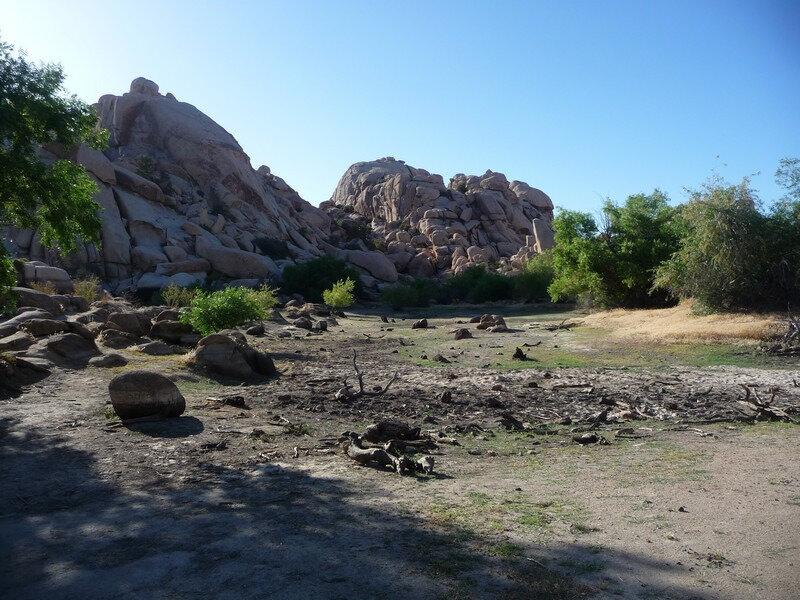 265 - Le desert de Joshua tree (17)