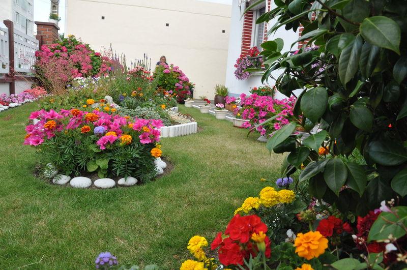 jardins fleuris 0080009