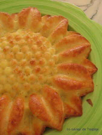 biscuit_orange1