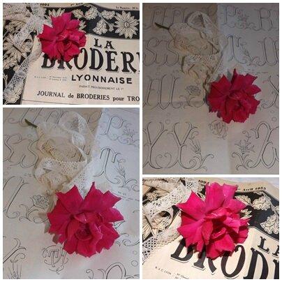 Roses pour Katia (2)