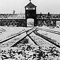 70e anniversaire de la libération d'auschwitz