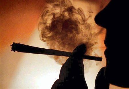 Cannabis fumeur