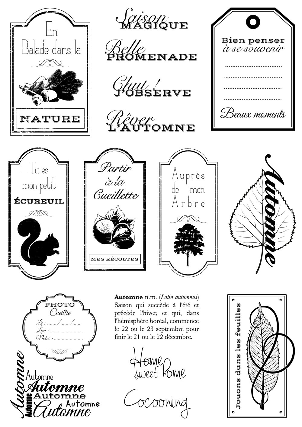 PLANCHE TAMPONS REVER AUTOMNE 02 1000