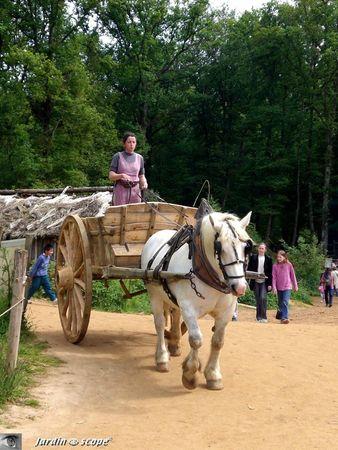 Charrette_et_cheval