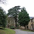 IMG_6774a
