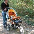 Promenade en forêt de Fontainebleau