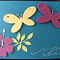 Un combo ... un hibiscus ... des papillons ... une carte de voeux exotique !