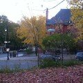 Mont royal 21oct 028