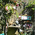 Windows-Live-Writer/jardin-charme_12604/DSCN0553_thumb